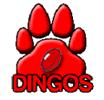 Toronto Dingos